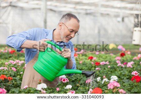 Cheerful senior florist is pouring water on flowers at garden center. He is standing and holding container of water. The man is smiling - stock photo