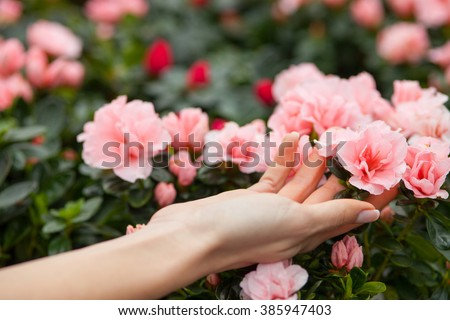 Cheerful young lady is choosing a flowerpot - stock photo