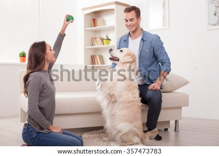Cheerful young loving couple is playing with their dog at home. The woman is sitting on flooring and holding a ball. The man is looking at the animal and smiling    - stock photo