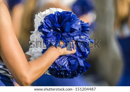 Cheerleader pom poms - stock photo