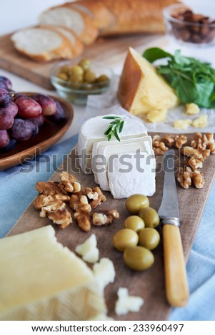 Cheese platter starter appetiser party snack, assortment of different cheeses, nuts, olives and grapes - stock photo