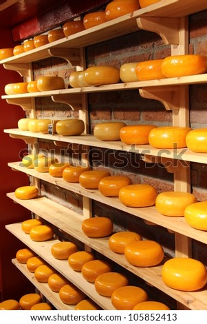 Cheese rounds - stock photo