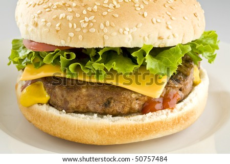 Cheeseburger with lettuce and tomato on white plate - stock photo