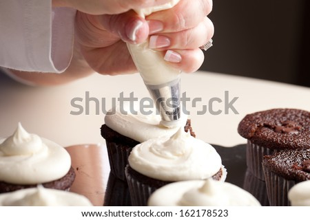 Chef decorating and piping buttercream icing on chocolate filled chocolate cupcakes - bakery - stock photo