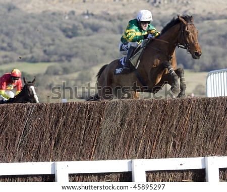 CHELTENHAM, GlOUCS - JAN 30: Jockey AP (Tony) McCoy takes Doctor Pat over fences in the second race at Cheltenham racecourse on January 30, 2010 in Cheltenham, Gloucs - stock photo