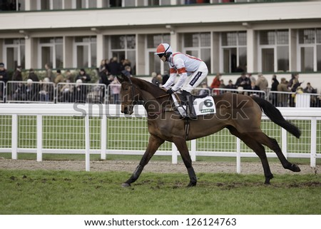 CHELTENHAM, GLOUCS-JANUARY 26: Jockey Aidan Coleman going out to the third race with Katenko at Festival Trials Day, Cheltenham Racecourse, Cheltenham UK on Jan 26, 2013. - stock photo