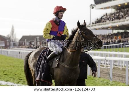CHELTENHAM, GLOUCS-JANUARY 26: Jockey Joe Tizzard returns from racing Theatrical Star in the second race at Festival Trials Day, Cheltenham Racecourse, Cheltenham UK on Jan 26, 2013. - stock photo