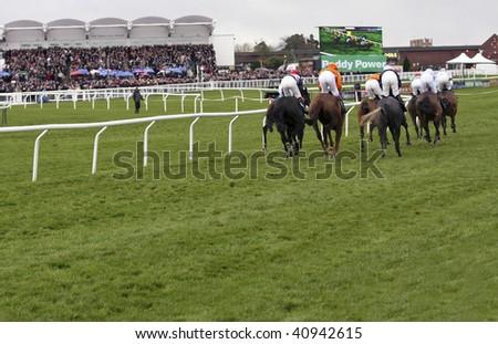 CHELTENHAM, GLOUCS; NOV 14: jockeys race up the hill in the first race at  Cheltenham Racecourse, UK, November 14, 2009 in Cheltenham, Gloucs - stock photo