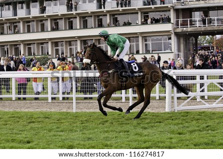 CHELTENHAM, GLOUCS, OCT 20 2012 jockey Alain Cawley rides Havingotascoobydo to the start at the second race at Cheltenham Racecourse, Cheltenham UK Oct 20 2012 - stock photo