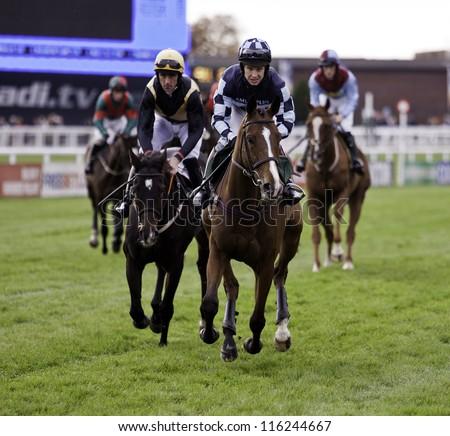 CHELTENHAM, GLOUCS, OCT 20 2012, Jockey Richard Johnson leads the horses to the start of the first race at Cheltenham Racecourse, Cheltenham UK Oct 20 2012 - stock photo