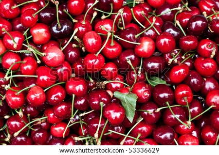 Cherries - stock photo