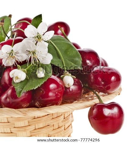 cherries isolated on white background - stock photo