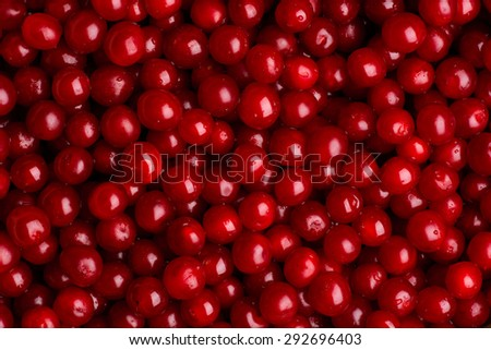 Cherries on wooden table with water drops macro background. - stock photo