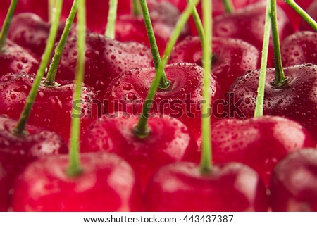 Cherry background. Ripe fresh rich cherries with  tails and drops of water. Macro. Texture. Fruit background. Food background. - stock photo