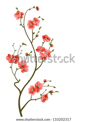 cherry blossom branch abstract background - stock photo