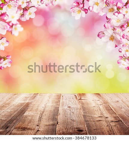 Cherry blossoms with empty wooden planks - stock photo