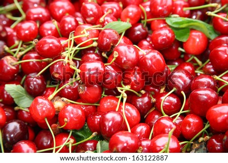 cherry fruit in season - stock photo