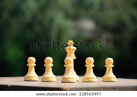 Chess pawns and king representing protectionism - stock photo
