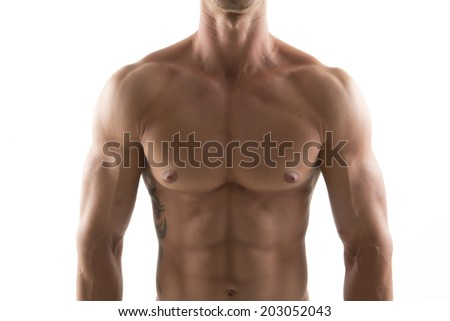 chest body building - stock photo