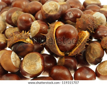 Chestnut fruits  background.  Shallow depth-of-field. - stock photo