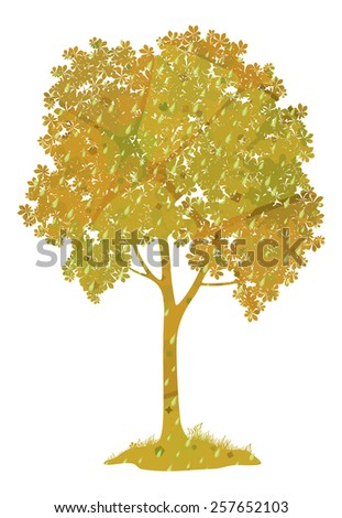 Chestnut tree with leaves, grass, rain drops and abstract pattern isolated on a white background, a symbol of autumn. - stock photo
