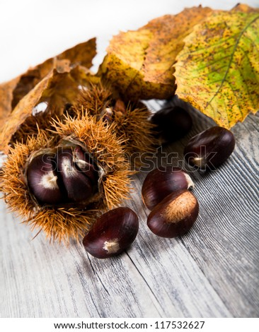 Chestnuts eatable - stock photo