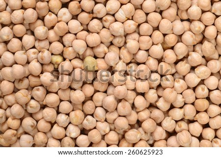 chick pea background - stock photo
