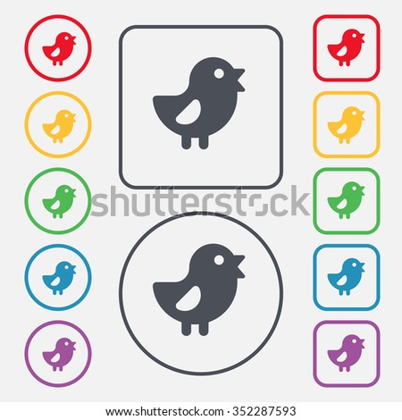 chicken, Bird icon sign. symbol on the Round and square buttons with frame. illustration - stock photo