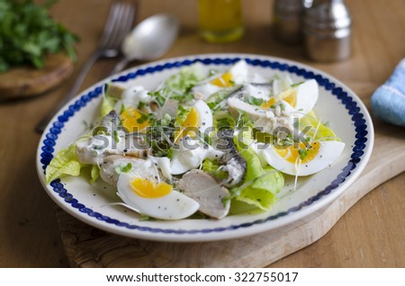 Chicken Caesar salad with anchovies and cress - stock photo