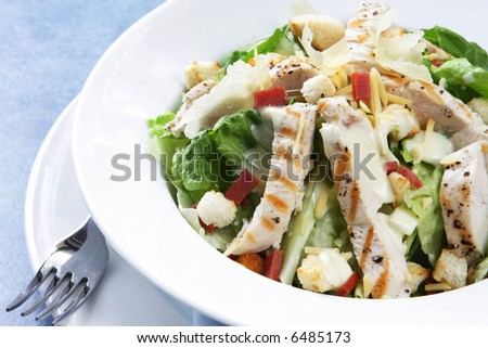 Chicken Caesar salad with romaine lettuce, croutons, grated parmesan, bacon bits, and grilled chicken breast.  Delicious! - stock photo