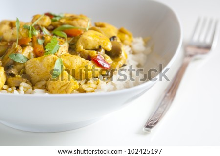 Chicken curry in a white bowl with fork - stock photo