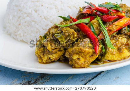 Chicken curry with rice on white plate . - stock photo