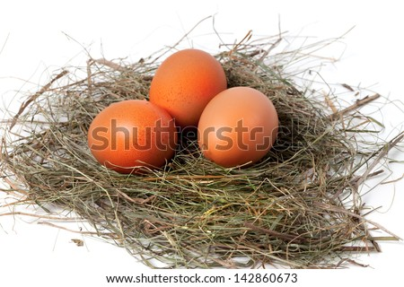 Chicken eggs in nest. On white background. - stock photo
