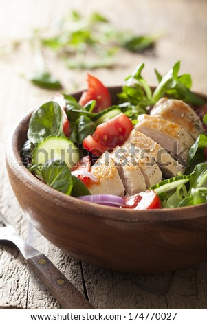 chicken salad with tomatoes and cucumber  - stock photo