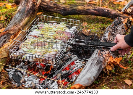 Chicken shashlik being roasted over charcoal - stock photo