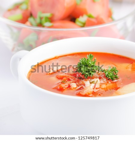 chicken soup with tomato, carrot, onion and potato - stock photo