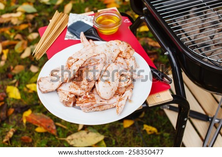 chicken wings for bbq - stock photo