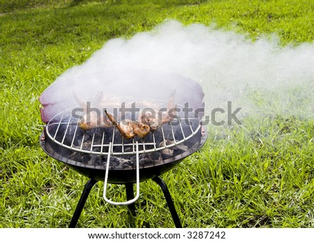 Chicken wings grilling in the barbecue - stock photo