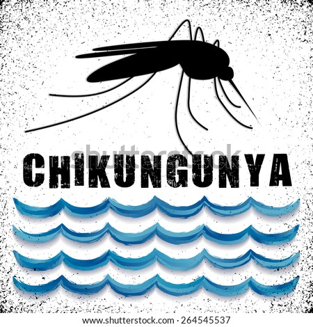 Chikungunya, Mosquito, standing Water, graphic illustration, grunge background. EPS8 compatible.  - stock photo