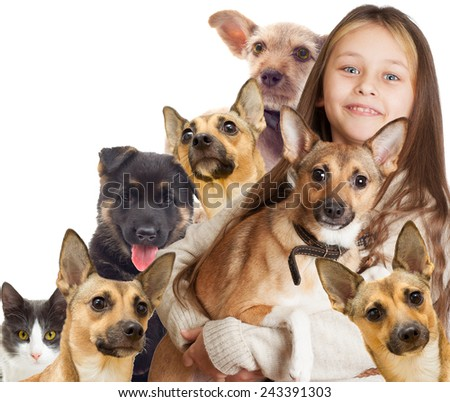child and a group of puppies - stock photo