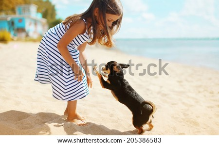 Child and dog playing on the beach in summer day - stock photo