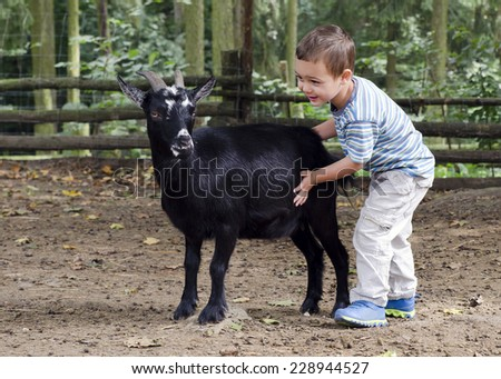 Child boy petting a black goat on a farm. - stock photo
