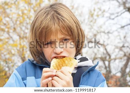 child eating sandwich - stock photo