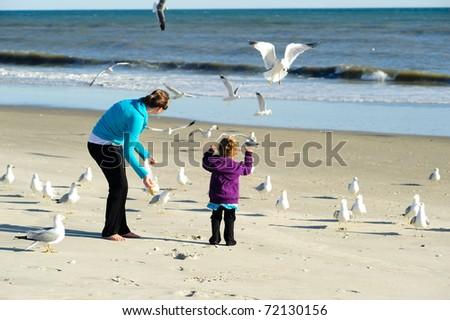 child feeding birds at the beach - stock photo
