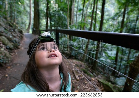 Child (girl age 04) during a rainforest walk in Springbrook National Park in Queensland Australia. - stock photo