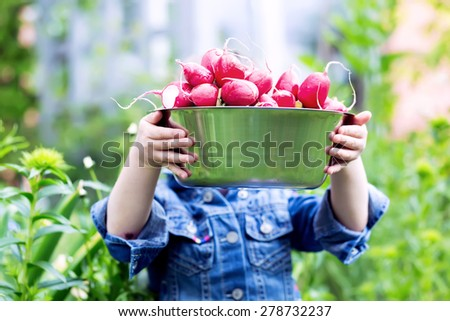Child hands holding a bowl full of harvested radishes from the garden - stock photo