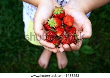 Child holding strawberries - stock photo