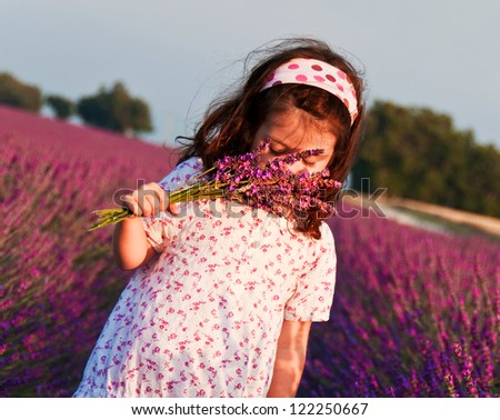 Child in lavender field - stock photo