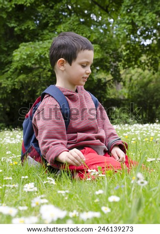 Child picking wild daisy flowers on a lawn or meadow or a wild garden in spring. - stock photo