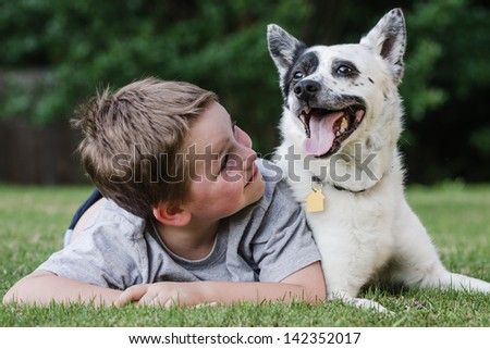 Child playing with his pet dog, a blue heeler - stock photo